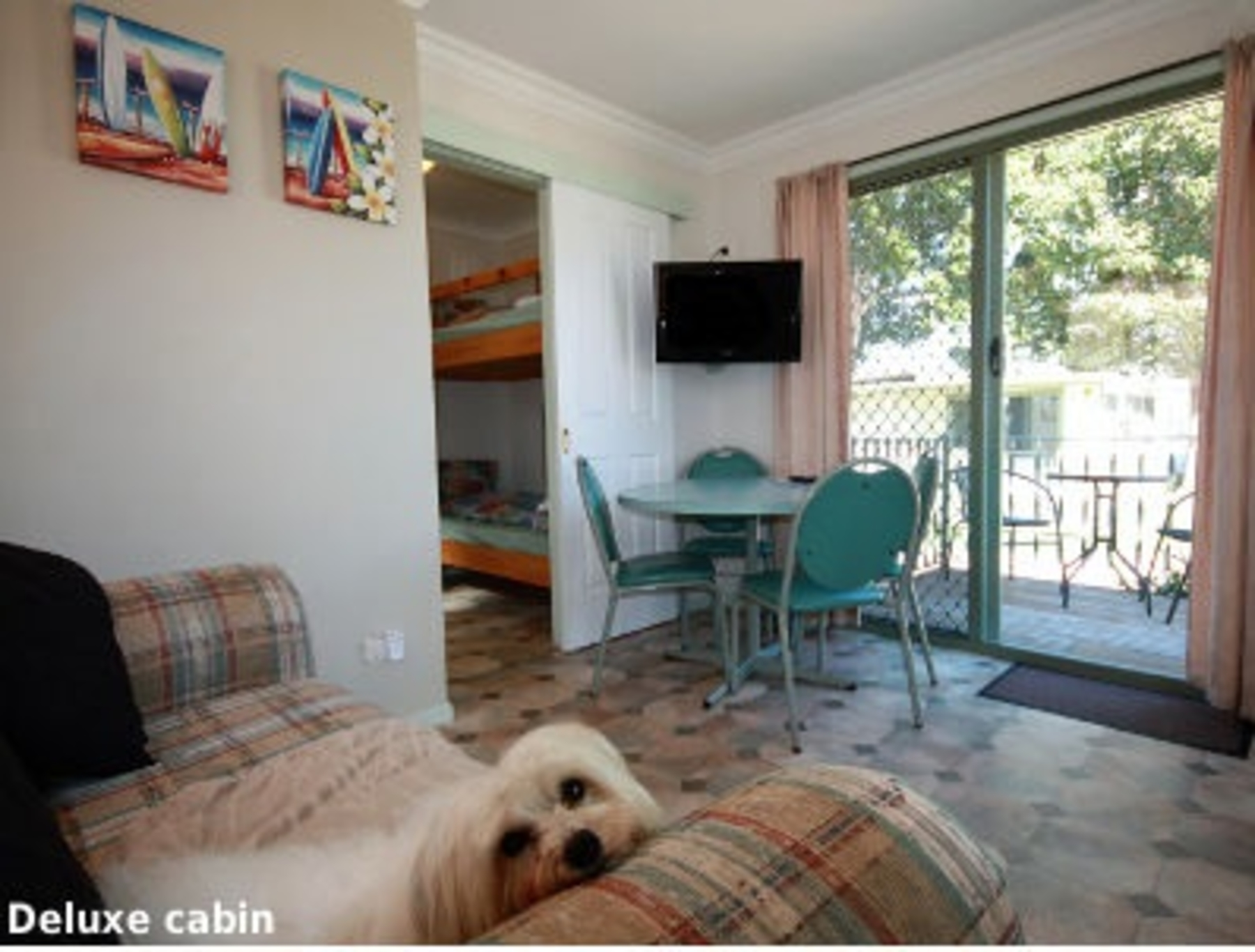 Prime Pet Friendly Tourist Park - Lakes Entrance - Vic | Pet Friendly