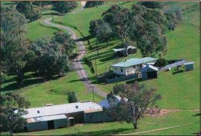 Ryelands Farmstay - Tarlee - Clare Valley - SA | Pet Friendly