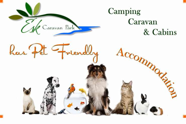 Esk Caravan Park - Esk - Brisbane - Qld   Pet Friendly